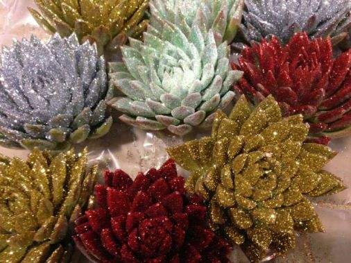 b9f59e47fb3697cdff671ae12fe9e321--succulents-wedding-decor